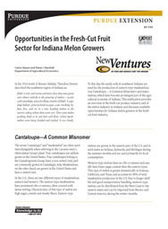 Opportunities in the Fresh-Cut Fruit Sector for Indiana Melon Growers