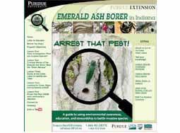 Arrest That Pest! - Emerald Ash Borer in Indiana
