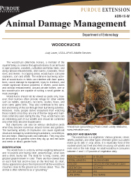 Animal Damage Management: Woodchucks