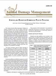 Controlling Rodents in the Commercial Poultry Facilities