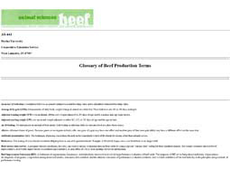 Glossary of Beef Production