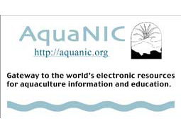 What is Aquanic (Template for Mouse pad)