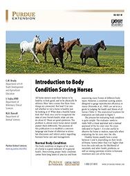 Introduction to Body Scoring of Horses
