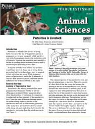 Parturition in Livestock