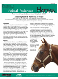 Assessing Health & Well-Being of Horses
