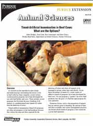 Timed-Artificial Insemination in Beef Cows: What are the Options?