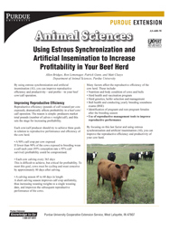 Using Estrous Synchronization and Artificial Insemination to Increase Profitability in Your Beef Herd