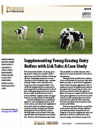 Supplementing Young Grazing Dairy Heifers with Lick Tubs: A Case Study