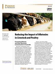 Reducing the Impact of Aflatoxins in Livestock and Poultry