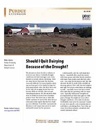 Should I Quit Dairying Because of the Drought?
