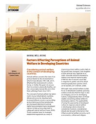 Factors Affecting Perceptions of Animal Welfare in Developing Countries