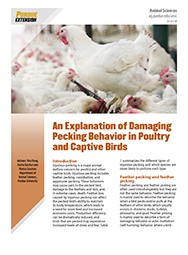 An Explanation of Damaging Pecking Behavior in Poultry and Captive Birds