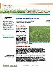 Turfgrass Management: Yellow Nutsedge Control