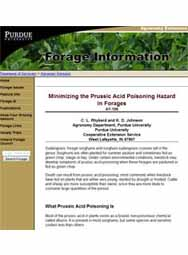 Minimizing the Prussic Acid Poisoning Hazard in Forages
