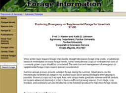 Producing Emergency or Supplemental Forage for Livestock