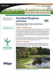 Turfgrass Management: Facts About Phosphorus and Lawns
