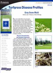 Turfgrass Disease Profiles: Gray Snow Mold