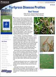 Turfgrass Disease Profiles: Red Thread
