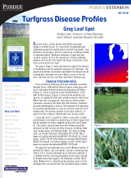 Turfgrass Disease Profiles: Gray Leaf Spot