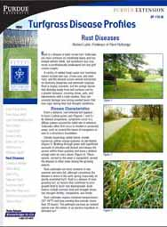 Turfgrass Disease Profiles: Rust Diseases