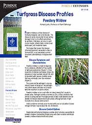 Turfgrass Disease Profiles: Powdery Mildew
