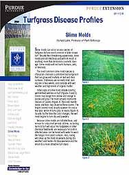 Turfgrass Disease Profiles: Slime Molds
