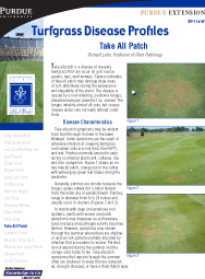 Turfgrass Disease Profiles: Take All Patch