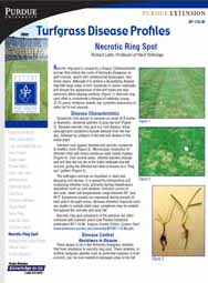Turfgrass Disease Profiles: Necrotic Ring Spot