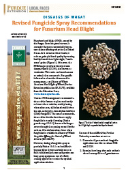 Diseases of Wheat: Revised Fungicide Spray Recommendations for Fusarium Head Blight