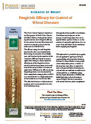 Diseases of Wheat: Fungicide Efficacy for Control of Wheat Diseases