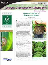Disease Management Strategies for Horticultural Crops: Pythium Root Rot of Herbaceous Plants