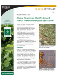 Vegetable Diseases: Mature Watermelon Vine Decline and Similar Vine Decline Diseases of Cucurbits