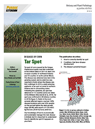 Diseases of Corn: Tar Spot