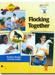 Poultry 3: Flocking Together