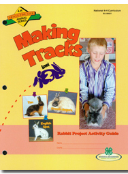 Rabbit 2: Making Tracks