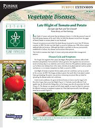 Vegetable Diseases: Late Blight of Tomato and Potato