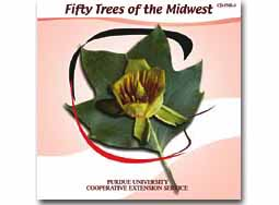 Fifty Trees of the Midwest CD