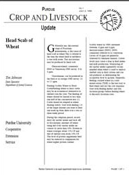 Head Scab of Wheat