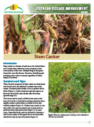 Soybean Disease Management: Stem Canker