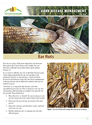 Corn Disease Management:  Ear Rots