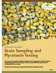 Corn Disease Management: Grain Sampling and Mycotoxin Testing