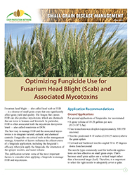 Small Grain Disease Management: Optimizing Fungicide Use for Fusarium Head Blight (Scab) and Associated Mycotoxins