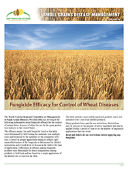 Small Grains Disease Management: Fungicide Efficacy for Control of Corn Diseases 2018