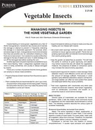 Managing Insects in the Home Vegetable Garden