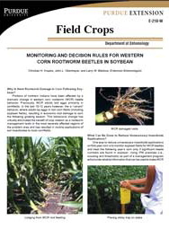 Monitoring and Decision Rules for Western Corn Rootworm Beetles in Soybean