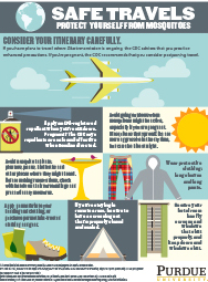 Safe Travels: Protect Yourself from Mosquitoes