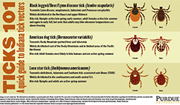 Ticks 101: A Quick Start Guide to Indiana Tick Vectors
