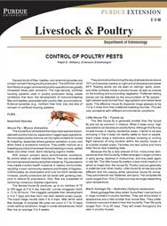 Control of Poultry Pests