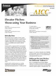 Elevator Pitches: Showcasing Your Business