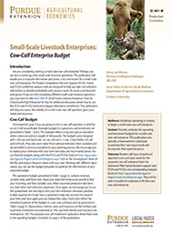 Small-Scale Livestock Enterprises: Cow-Calf Enterprise Budget
